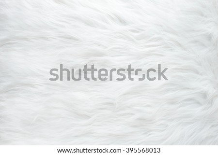 White fur texture, close-up.Useful as background Royalty-Free Stock Photo #395568013