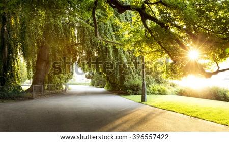 Promenade in a beautiful city park #396557422