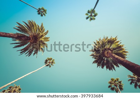 Redeo Los Angeles Vintge Palm Trees Vintage - clear summer skies Royalty-Free Stock Photo #397933684