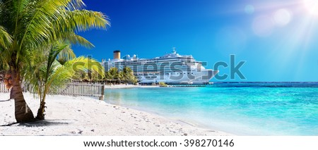 Cruise To Caribbean With Palm tree On Coral Beach  Royalty-Free Stock Photo #398270146