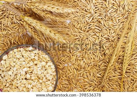 Grain oats, oat flakes in a box, twigs barley closeup #398536378