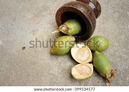 Betel palms on background of a cement. #399534577