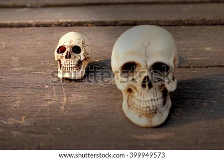 Still life skull - Human skull on old wooden - vintage human skull on slit wooden table, select focus #399949573