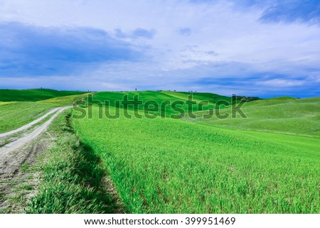 road in the green Tuscany sienna Italy val d'orcia #399951469
