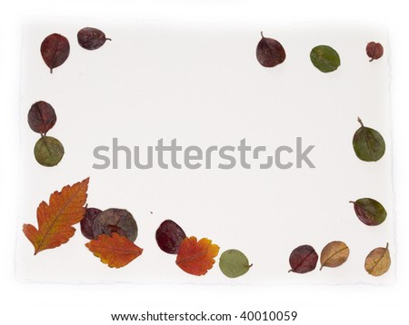 paper note with autumn leaves #40010059