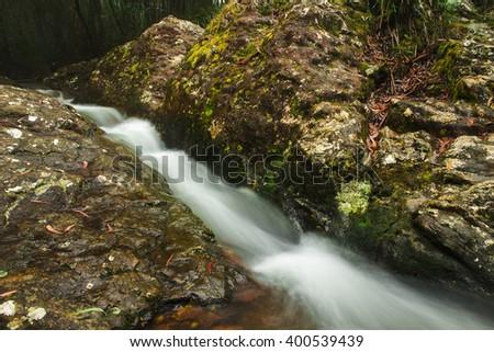 Goomoolahra creek at Springbrook National Park in Queensland. #400539439