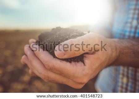 Farmer holding pile of arable soil, male agronomist examining quality of fertile agricultural land, close up with selective focus #401548723