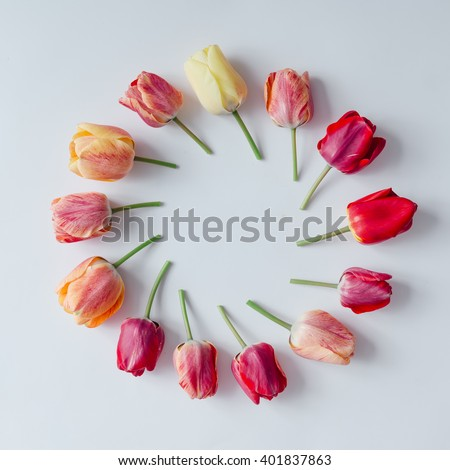 Creative arrangement of tulip flowers on bright background. Flat lay. #401837863