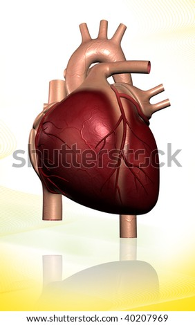 Digital illustration of  heart  in isolated background #40207969