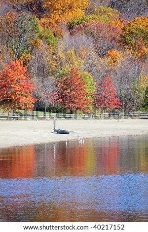 Small boat on beach with beautiful fall trees #40217152