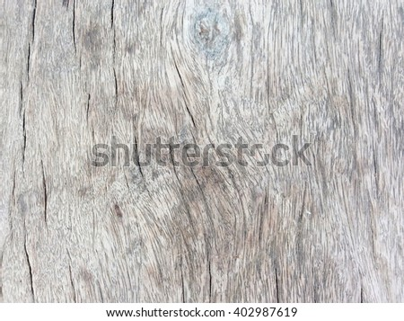 Old Wood texture,Bark texture for the background or text. #402987619