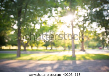 defocused bokeh background of garden with blossoming trees in sunny day, backdrop, summer time Royalty-Free Stock Photo #403034113