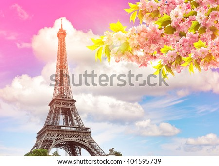 Eiffel Tower Paris against colorful blue sunset sky. Blossoming spring cherry tree. Vintage style toned picture