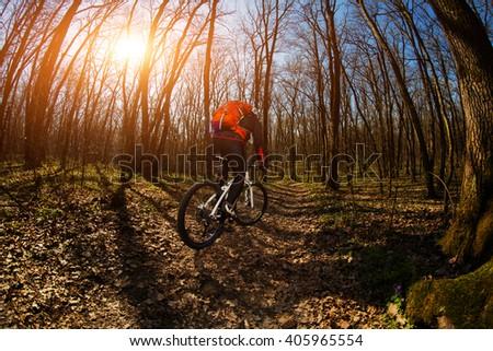Cyclist Riding the Bike #405965554