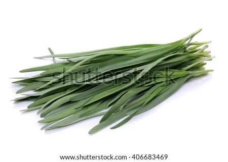 Bundle of garlic chives (leek leaves) #406683469