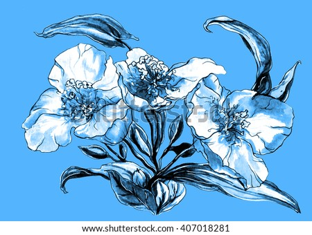 Aquilegia (granny's connet or columbine) tropical flower isolated on blue background. Hand drawn watercolor botanical black and white monochrome illustration for wedding printing card invitation gift