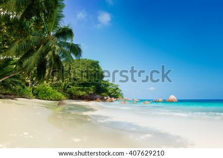 tropical anse lazio beach on praslin island seychelles #407629210