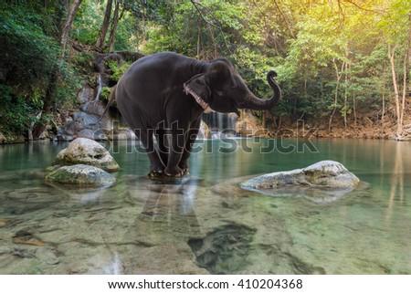 Erawan Waterfall with elephant at Kanchanaburi, Thailand #410204368