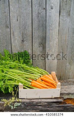 Fresh eco carrot in wooden box in the garden  #410585374