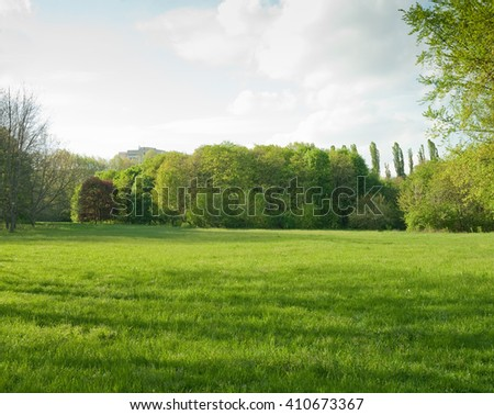 Beautiful meadow and tree in the park #410673367