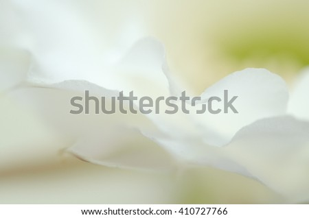 Abstract white background #410727766