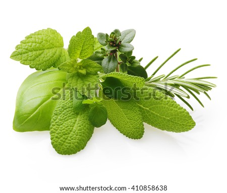Fresh spices and herbs isolated on white background Royalty-Free Stock Photo #410858638
