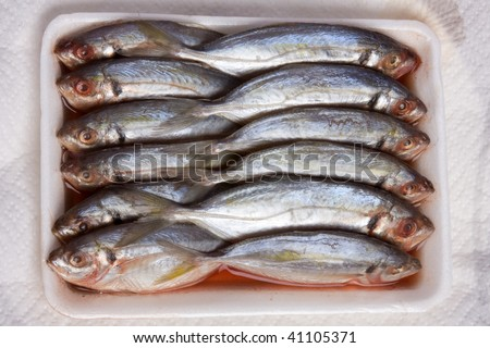Twelve fish in a Styrofoam container on a white background.  Twelve fish eyes and fins.