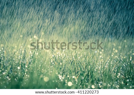 Wonderful heavy rain shower in the sunshine of springtime or summer enjoy the relaxing nature Royalty-Free Stock Photo #411220273