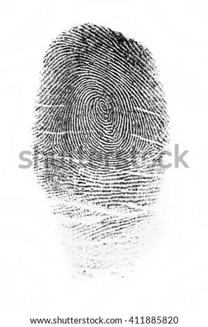 Fingerprint #411885820