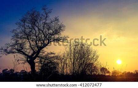 sunset over rural pond in the Kent countryside with vibrant sky. #412072477