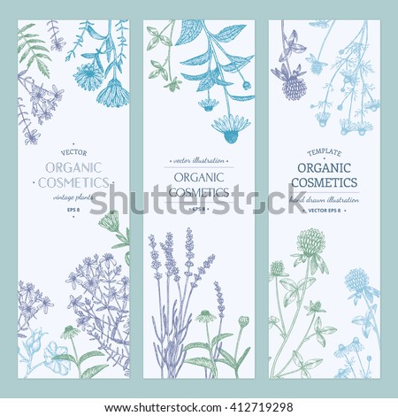 Vector hand drawn cosmetics plants illustration, concept, template. #412719298