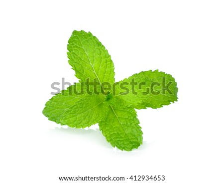 Fresh mint isolated on the white background. #412934653