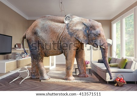 Big elephant and the basket of apples  in the living room. Photo combination and cg elements