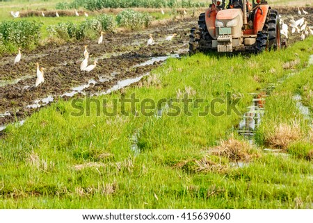 Agricultural tractor cultivated land in the paddy fields #415639060