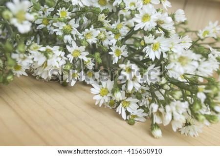white little flower on wooden table #415650910