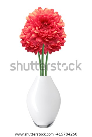Red Dahlia Autumn flower in vase isolated on white background #415784260