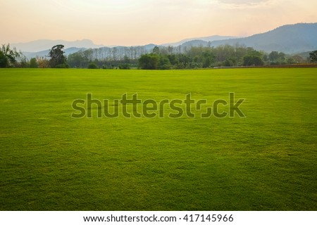 Background image of lush grass field #417145966