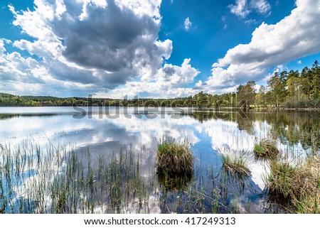 Spring lake landscape, beautiful nature scene #417249313