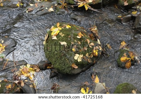 Water worn moss covered rounded stone in the middle of a tranquil stream #41725168