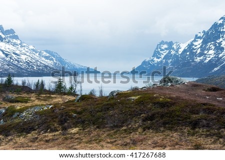 Mountains in the north of Norway. Ersfjord #417267688