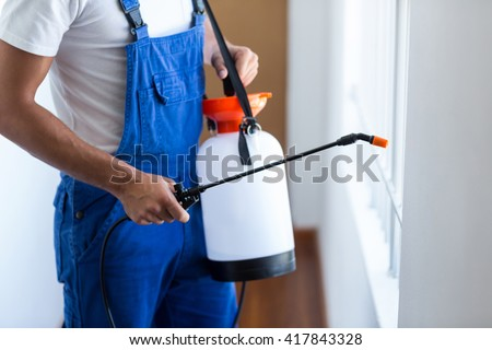 Midsection of pest control worker with sprayer standing at home Royalty-Free Stock Photo #417843328