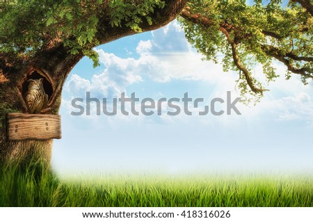 background with a tree and an owl (illustration of a fictional situation, in the form collage of photos)