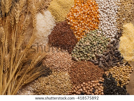 Cereal grains , seeds, beans Royalty-Free Stock Photo #418575892