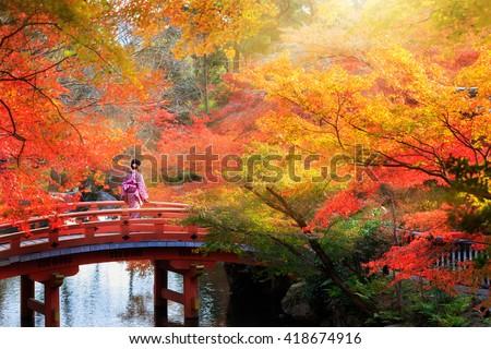 Wooden bridge in the autumn park, Japan autumn season, Kyoto Japan