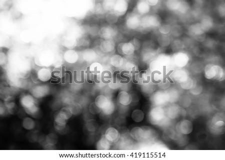 Abstract blurred background from nature with light,Hope and faith concept,Black and white #419115514