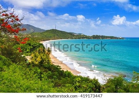Beautiful tropical summer view of Puerto Rico with red flowers and a white beach Royalty-Free Stock Photo #419173447