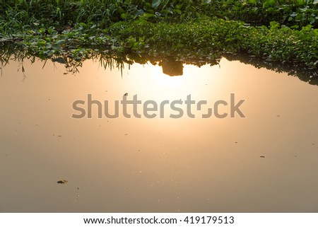 Sun Water River #419179513