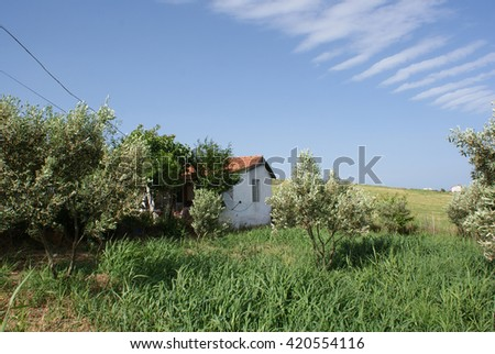 Farm village with green fields, trees, house and blue sky. Nature landscape. #420554116