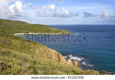 Lush green shoreline of the British Virgin Islands. #42320308