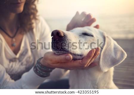 owner caressing gently her dog #423355195